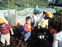 子どもたちが農園活動をしている様子